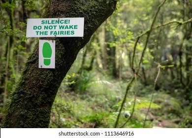Forest Walk, Hiking Trail. Fairies Sign