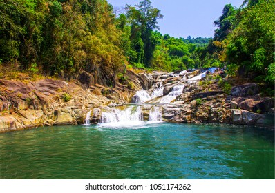 Forest waterfall river landscape