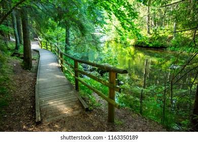 Forest way walk road in Taevaskoja, Estonia