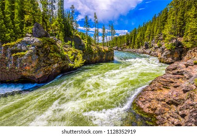 Forest wild river landscape. Mountain forest river cascade flow. Mountain forest river rapid panorama
