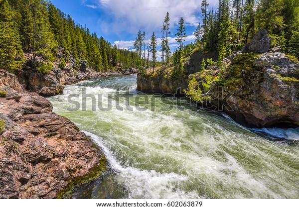 WHIRL ISLANDS DUNGEON #1 - Página 2 Forest-wild-river-landscape-rapids-600w-602063879