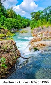 Forest wild river scene