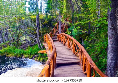Forest wooden bridge way view. Wooden bridge in forest. Forest river wooden bridge. Wooden bridge in forest scene