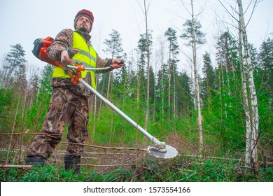 Forest worker caring for forest planting. growing young forest and lumberjack with trimmer. Forestry and afforestation. Real people work. Film stylization.