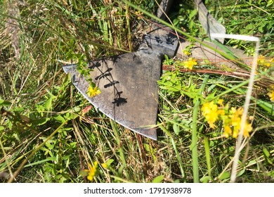 Forest worker's tools - beautiful detail of an ax lying in the grass