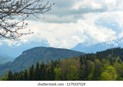 Forest-covered hills lead to snow-covered mountains. Storm clouds fill the sky. The bare branches of a tree frame the view.