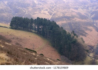 Forested area in rural hills.