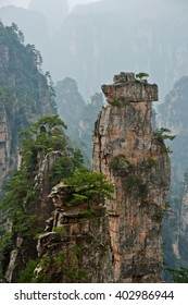 Forested cliffs of the floating mountains in the national park, China