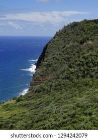A forested coastline on Molokai