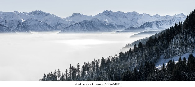 Forested mountain slope and mountain range in low lying valley fog with silhouettes of evergreen conifers shrouded in mist. Scenic snowy winter landscape in Alps, Bavaria, Germany.