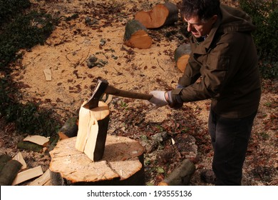 Forester chopping wood with an axe
