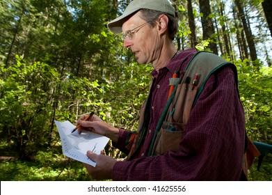 Forester reading a map in a forest among Douglas fir trees