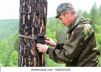 Foresters install Camera-photo traps with infrared radiation and a motion detector, attached by straps on a tree, photograph animals in the Siberian taiga.