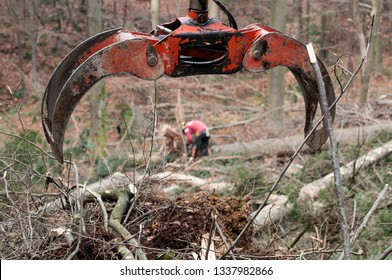 Forestry grapple for picking up timber and forestry worker in background. Forestry, machinery, environment, workers and protective gear concepts.