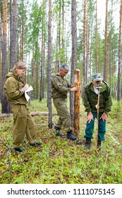 Forestry inspector with a group of foresters marking out the plot for sanitary felling of the forest. Foresters, working scaffolds establish the marking of the site of sanitary felling of the forest.