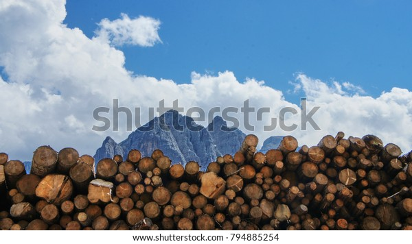 Forestry in the Italian Dolomites