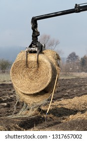 Forestry tractor crane arm with grapple lifting a bundle of straw for ground cover. Agriculture, farming, forestry and mechanization concepts.