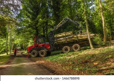 Forestry work at Biel, East Lothian, Scotland.