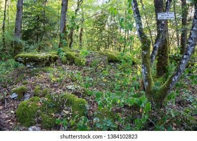 Forests of Alaise where the last Gauls resided, known for the stories of Asterix and Obelix