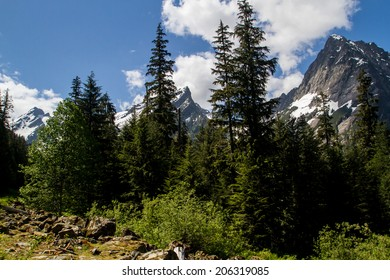 Forests and Mountain Peaks in the Cascade Range