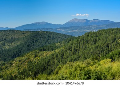 Forests, mountains and sky