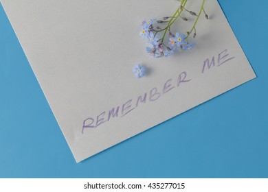 Forget-me-not flower on message note. alone concept