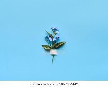 Forget-me-not wild flowers fixed with band aid to blue mint background. Simple composition, natural light. Wild flowers attached to blue paper with medical aid patch.
