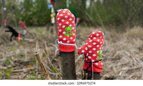Forgotten in the forest mittens