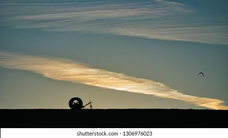 A forgotten piece or agricultural equipment and a migratory bird in silhouette on the horizon at evening