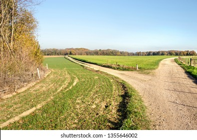 Fork in a dirt road in a hilly landscape with green meadows and woodland near Valkenburg, The Netherlands