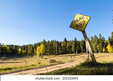 Forked dirt road dead end
