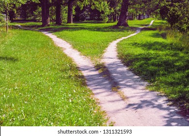 Forked footpath in the park, diverging in different directions