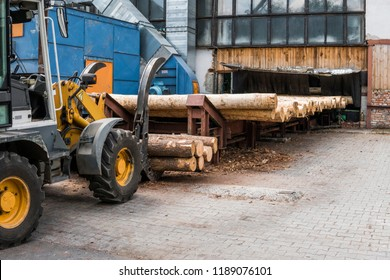 Forklift truck grabs wood in a wood processing plant. Large log loader unloading a log truck in the log yard at a conifer log mill. Processing of timber at the sawmill.