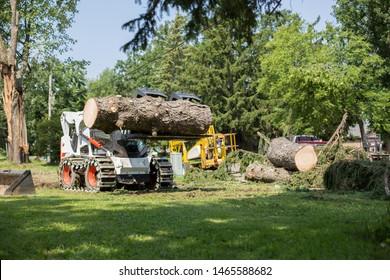 Forklift truck grabs wood in a wood processing plant. Skid steer loader.Lumberjack cutting tree. Forklift truck big tree. tree down.