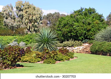 Formal Garden with Beds of Succulent Plants and other drought tolerant (low water usage) plants.