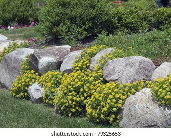 A formal garden edged with rock. There is yellow ground cover blooming between the spaces in the rocks.