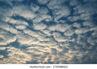 Formation of altocumulus clouds on Kolkata sky during evening, days before super cyclonic storm 'Amphan' scheduled to hit Indian coastal states West Bengal & Odisha. Shot on Kolkata on 05/18/2020.