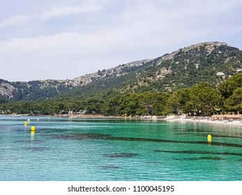 FORMENTOR, MALLORCA - MAY 20, 2018: The beautiful sandy beach of Formentor beach.  This is located on Cap de Formentor the northern most point of the Balaeric Island Majorca in Spain