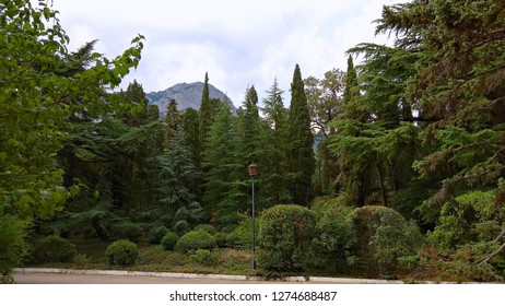 Foros fabulous, luxuriant park with a view of the mountain summit. Thicket of the different types of tree species along a pavement with an elegant, classic lamppost in a seacoast, old park.