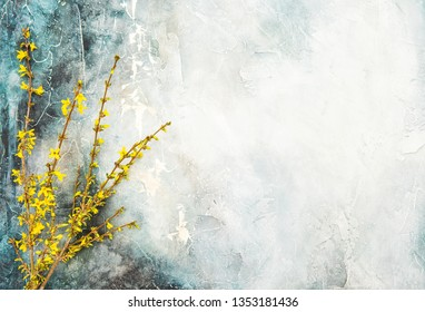 Forsythia blossoming twigs. Spring flowers on watercolor background