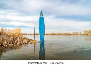Fort Collins, CO, USA - March 12, 2019: Early spring stand up paddling,  a racing paddleboard by Staboard held in a vertical position on a lake shore  in Colorado.