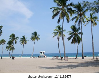 Fort Lauderdal Beach near Miami on a sunny and bleu day, with coconut trees