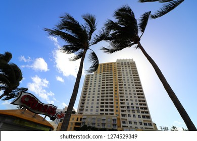 Fort Lauderdale, Florida / USA - December 20 2018: Nu River Landing as seen from Bubier Park and New North Riverwalk Drive over Tarpon between two Coconut Palms blocking the sun with blue sky.