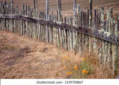 Fort Ross, California fences