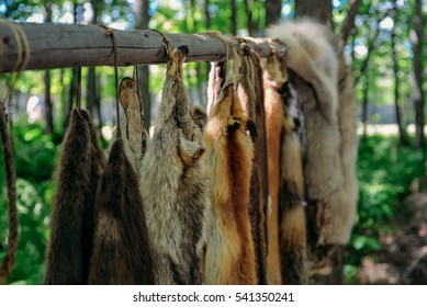 Fort William Historical Park, animal pelts, Thunder Bay, Ontario, Canada