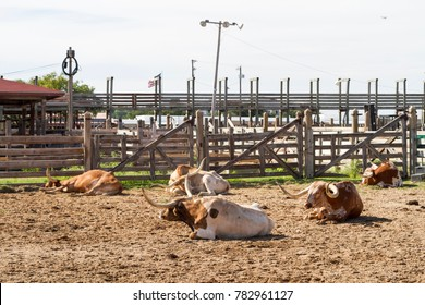 Fort Worth Stockyards Images Stock Photos Amp Vectors