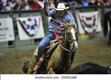 Rodeo Flag Stock Photos Images Amp Photography Shutterstock