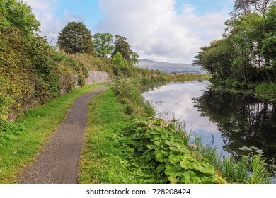 The Forth and Clyde Canal between Kirkintilloch and Twechar, East Dunbartonshire, Scotland. The towpath is used by the John Muir Way, a Scottish coast to coast walking trail.