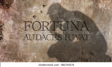 Fortuna audaces iuvat. A Latin phrase meaning Fortune helps the bold.
