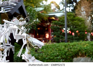 Fortune papers tied to ropes at Japanese shrine.